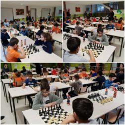 Foto escacs